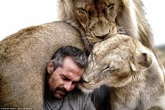 The animals live with world-renowned Lion Whisperer Kevin Richardson at his wildlife sanctuary in Pretoria