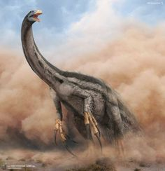 The proud bearer of the largest known claws in the history of life, the bizarre and beautiful (and huge) Therizinosaurus ('scythe lizard') cheloniformis, the gentle herbivorous theropod of Late Cretaceous Mongolia. Artwork by Vlad Konstantinov.