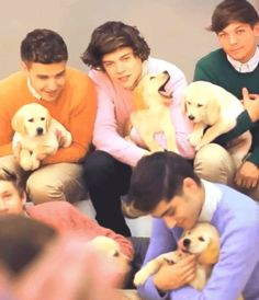 One Direction and Puppies... I can die happy now :) GIF