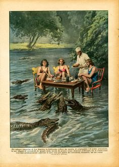 I'd say that they are up to their asses in Alligators!!!