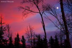 Sunset december 2014
