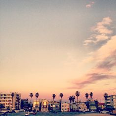 venice beach | los angeles, california.