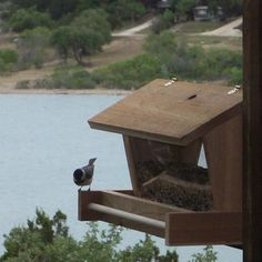Free Woodworking Plans For A Bird Feeder