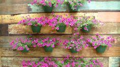 """Com o jardim vertical você pode dar um passo além e imprimir muito mais personalidade e charme à sua decoração. Além disso, essas """"paredes vivas"""" ajudam a diminuir os efeitos nocivos dos poluentes e a temperatura do ambiente."""