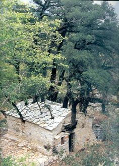 "17 trees growing on the roof of a church! *  St: Theodora Church  - Village ""Bata"" in Arcadia - Greece"