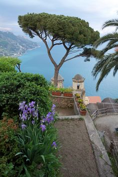 Ravello Italy. I fell in love with this place, and I am convinced that I will own a summer home here in the future!