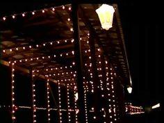 country christmas train denton farmpark - Christmas Train Denton Nc