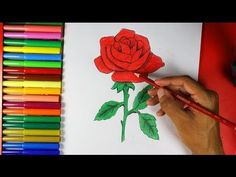 How to Draw a Rose Easy - YouTube