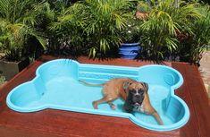 Bone Shaped Dog Pool, Dog Bone Pool, Doggie Pool, Pool For Dogs, Mini Swimming Pool, Mini Pool, Puppy Playground, Luxury Dog House, Dog Backyard