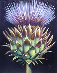 Thistle Painting featured on Parenthood by Carin Vaughn Purple
