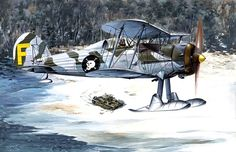 Gloster Gladiator from Swedish volunteers in the Russo-Finnish War