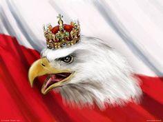 Poland by Obywatel-GC on DeviantArt Dojo, Polish Eagle Tattoo, Polish Language, Visit Poland, First Haircut, Warsaw Poland, Coat Of Arms, Bald Eagle, Tatoos
