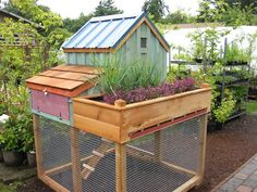 Saltbox chicken coop.  Measures 5' long, 3' wide and 7' tall.  15 square feet makes it ideal for up to five hens