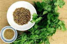 Coriander, also known as Cilantro, is a natural herb used extensively in many culinary dishes. Besides its pleasant aroma, it offers many health benefits and Coriander Oil, Coriander Cilantro, Ground Coriander, Fresh Coriander, Spices And Herbs, Fresh Herbs, Cilantro Herb, Alkaline Foods, Garam Masala