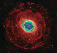 "humanoidhistory: "" The Ring Nebula, M57, courtesy of astrophotographer Robert Gendler. """