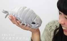 Strapya World : Giant Isopod Realistic Plush Doll (M Size)【Sea Creature】【Xmas geeky Plush】 Giant Isopod, Creepy People, Stuff And Thangs, Toy Craft, Plush Animals, Gifts For Friends, Friend Gifts, Plush Dolls, Fleece Fabric