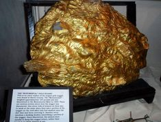 """The largest gold nugget ever found in Sierra County, known as the """"Monumental,"""" weighed 103 pounds and was discovered on the Sierra Buttes Mine Minerals And Gemstones, Crystals Minerals, Rocks And Minerals, Stones And Crystals, Gem Stones, Gold Reserve, Gold Prospecting, Gold Bullion, Rocks And Gems"""