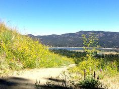 Summer in Big Bear: Things to Do + Where to Stay | Venuelust