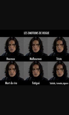 Afficher l'image d'origine, >> I don't speak the language but this looks funny Severus Snape, Funny Memes, Hilarious, Jokes, True Memes, Drarry, Harry Potter Animé, Workout Humor, Laughing So Hard