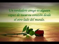 Happy Friendship Day Images, Friendship Quotes, Amor Quotes, Love Messages, Romantic Quotes, Spanish Quotes, Videos, Salvador, Namaste
