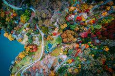 Autumn in Adelaide, Australia [3966 × 2624]