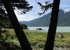 """""""Looking out to the Burke Channel near Bella Coola"""""""