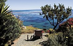Seaside Paradise: Robert Nieto's Shell Beach Garden | The Tribune & SanLuisObispo.com
