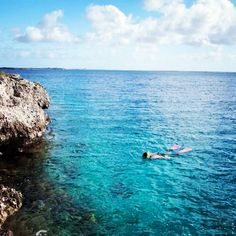 Scuba diving in Bonaire - my future trip!