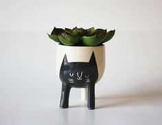 Ready to ship in 1-3 business days! A black and white cat planter, perfect for seedlings and succulents! This planter comes in two different sizes and this is the smaller one. Both have three legs and a drainage hole in the bottom. Each piece is thrown on the potters wheel with a creamy