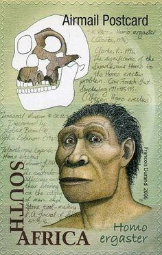 Stamp: Homo ergaster (South Africa) (Origin of Humankind) Mi:ZA 1739 Illustrations, Postage Stamps, South Africa, African, The Originals, Evolution, Humor, Illustration, Stamps