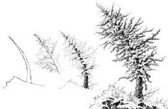 Drawspace.com - Lessons - Lesson Q05