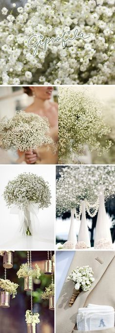 Fiquei com vontade de fazer um post só dessas flores - que também são chamadas de Mosquitinho, Cravo-do-Amor, Véu de noiva - acho elas muit...