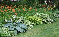 low maintenance perennial garden idea
