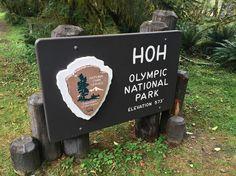 Nach einem genialen Frühstück im Forks Coffee Shop (biscuits with gravey probieren!) sind wir in den Hoh Rain Forest gefahren, um dort den beeindruckenden Moss Hall Trail zu laufen! Verrückt! Ich m…