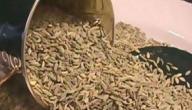 فوائد اليانسون وأضراره How To Dry Basil Herbs Dried