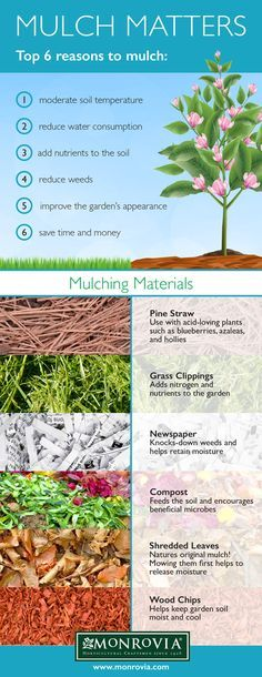 6 Reasons to Mulch 1) Moderate soil temperature 2) Reduce water consumption 3) Add nutrients 4) Reduce weeds 5) Improve garden's appearance 6) Save time and money