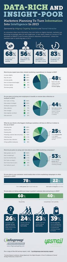 Infographic: How marketers will tackle Big Data in 2013 | MyCustomer