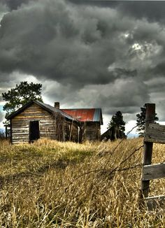 All alone in the country...Left Behind & Forgotten