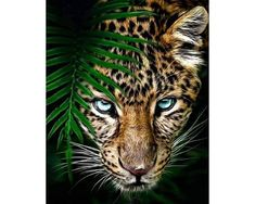 Beautiful Cats, Animals Beautiful, Animals And Pets, Cute Animals, Wild Animals, Animals Images, Wild Animal Wallpaper, Jaguar Wallpaper, Iphone Wallpaper