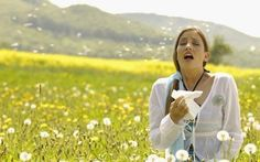 How to kiss seasonal allergies goodbye naturally with essential oils...I wonder if it really works!?!?
