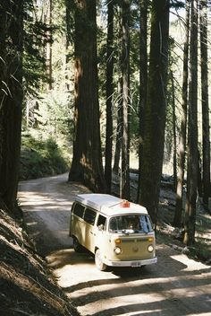 Model: 1978 VW Westfalia Location: Sequoia National Park, CA Photo: tristankimmerlephoto.tumblr.com