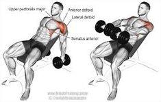 Znalezione obrazy dla zapytania shoulder training