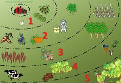 Permaculture Zones on 1/8 of an Acre | #permaculture #zones