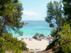 Fenêtre de verdure pour une vue sublime à Palma de Majorque