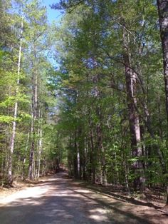 Sycamore Trail   Raleigh, North Carolina, United States (9.7 miles away)