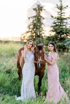 Bridal Inspiration Shoot featuring Bloom Screens - Decor & Rentals // Bridal Style // Wedding Rentals // Backdrops // Silk Florals // Bridal Gown // Outdoor Weddings // Blush Wedding // #albertaweddingsocial #weddinginspiration #styledshoot #weddingstyle #silkflorals #horsesatweddings #fourleggedfriends #bridalstyle Wedding Trends, Wedding Styles, Sunset Wedding, Wedding Rentals, Outdoor Weddings, Bridesmaid Dresses, Wedding Dresses, Beautiful Gowns, Bridal Style