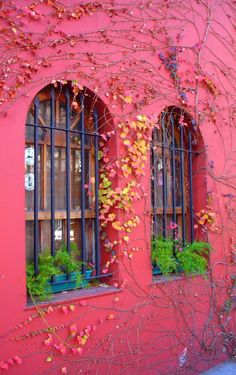 Buenos Aires, I LOVE the colors of this city, must go! Argentine Buenos Aires, Wonderful Places, Beautiful Places, Window View, Through The Window, Doorway, Architecture, Belle Photo, Windows And Doors