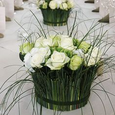 Moniek Vanden Berghe - Page 2 - Flora: The popular floral forum