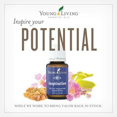 1000+ images about Young Living Essential Oils on ...