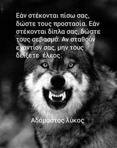 Greek Quotes, Wolf, Angel, Thoughts, Quotes, Angels, Wolves, Ideas